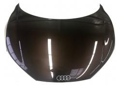 Audi R8 Haube Motorhaube Front Hood Lid 42B823021