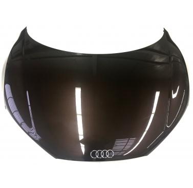 Audi R8 Front Hood Lid 42B823021