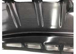Ferrari F430 Scuderia SHIELD FOR NOURICE CARBON 235048
