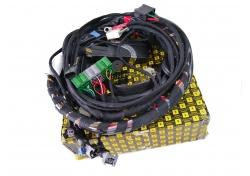 Ferrari F355 F1 Getriebe Übertragung Anschlusskabel F1 Transmission Connection Cables 174515
